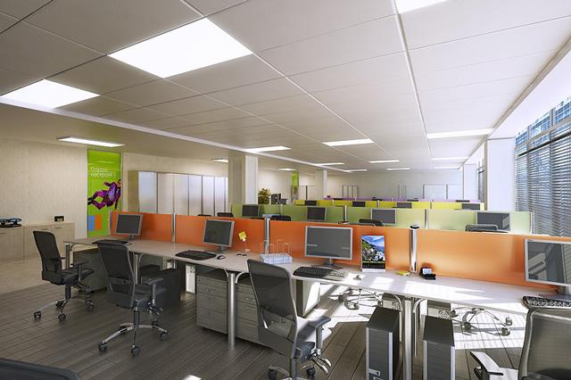 Làm trần thạch cao cho văn phòng làm việc. 5