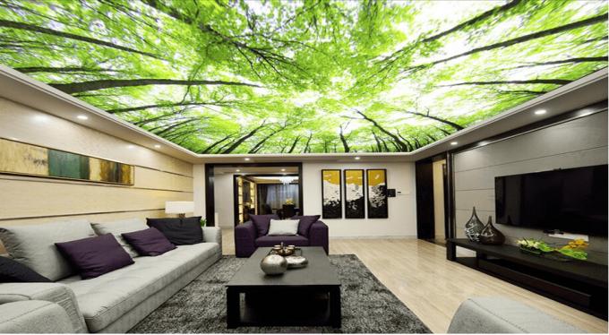 Thiết kế trần thạch cao 3D cho nhà phố đẹp ấn tượng - 4